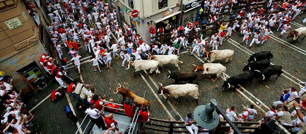 gonitwy byków w Pampelunie