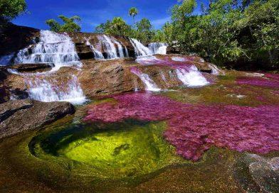 CAÑO CRISTALES (Kolumbia)- najpiękniejsza rzeka na świecie!