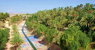 ELCHE – miasto pośród palm!